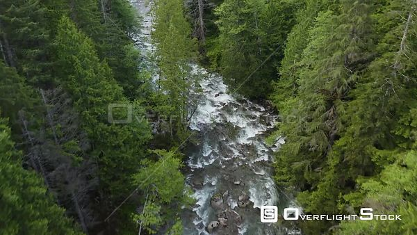 River in Forest Washington State Aerial View