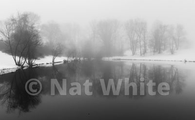 RC_fog_with_pond_reflection-3384_December_21_2020_NAT_WHITE