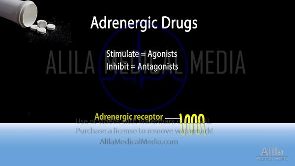 Adrenergic drugs NARRATED animation