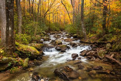 River Cascades in Autumn