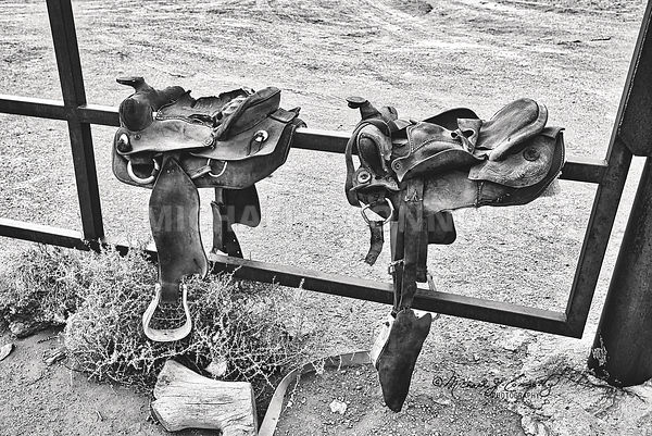 Worn Out Western Saddles (B&W)