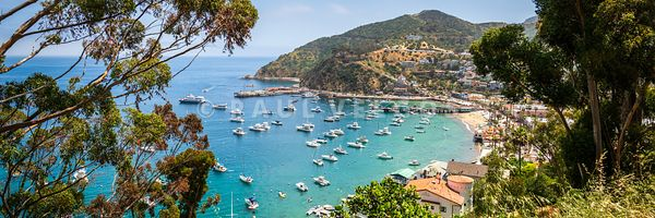 Avalon Bay Catalina Island Panorama Photo