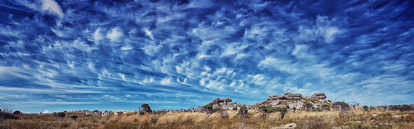 Cirrus clouds and summer fynbos