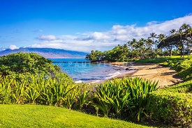 Maui Hawaii Ulua Beach Wailea Makena Photo