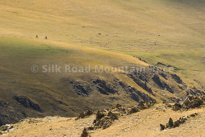 SILKROAD_2019_DAY_12_186