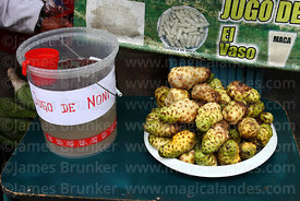 Fruit of Morinda citrifolia (also called great morinda and noni) and juice, Bolivia