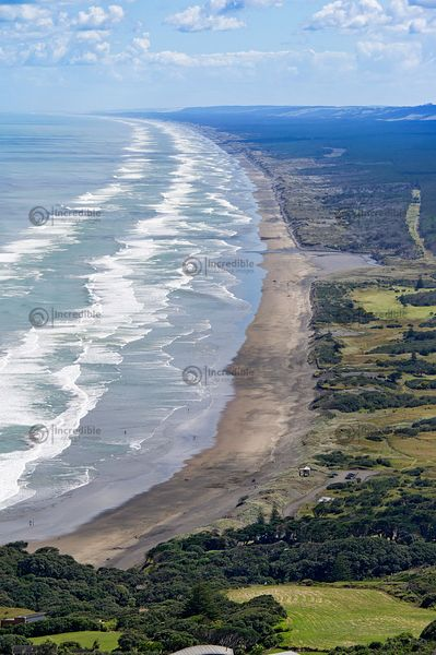Muriwai Beach Looking North