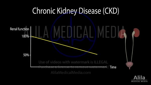 Chronic kidney disease NARRATED animation