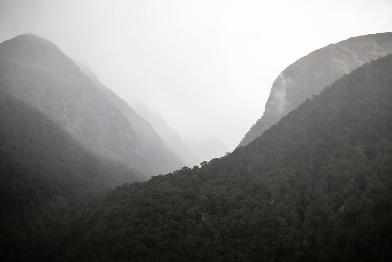 OwenRothPhotography-MasterTIFF-March_25_2019-Fiordland_National_Park-3632