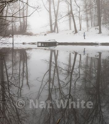 RC_fog_with_pond_reflection-walking-3414_December_21_2020_NAT_WHITE