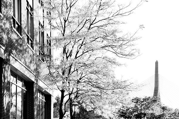 BOSTON DOWNTOWN BLACK AND WHITE