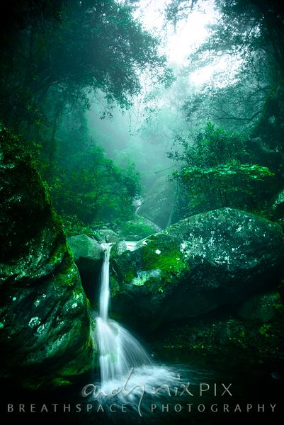 Misty gorge waterfall
