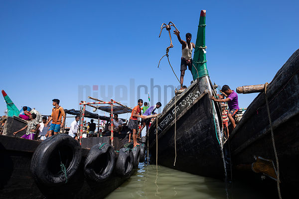 Loaded Fishing Trawlers arrive at the Fishery Ghat