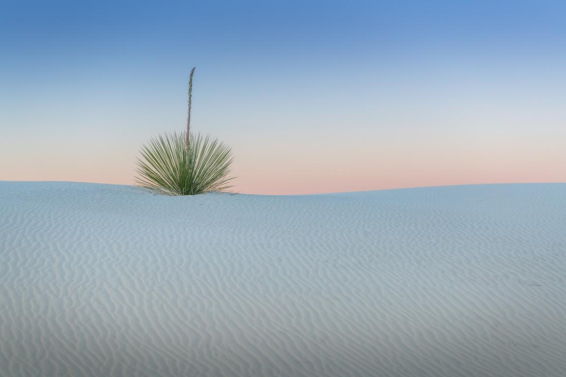 New-Mexico-landscape-photography-7719