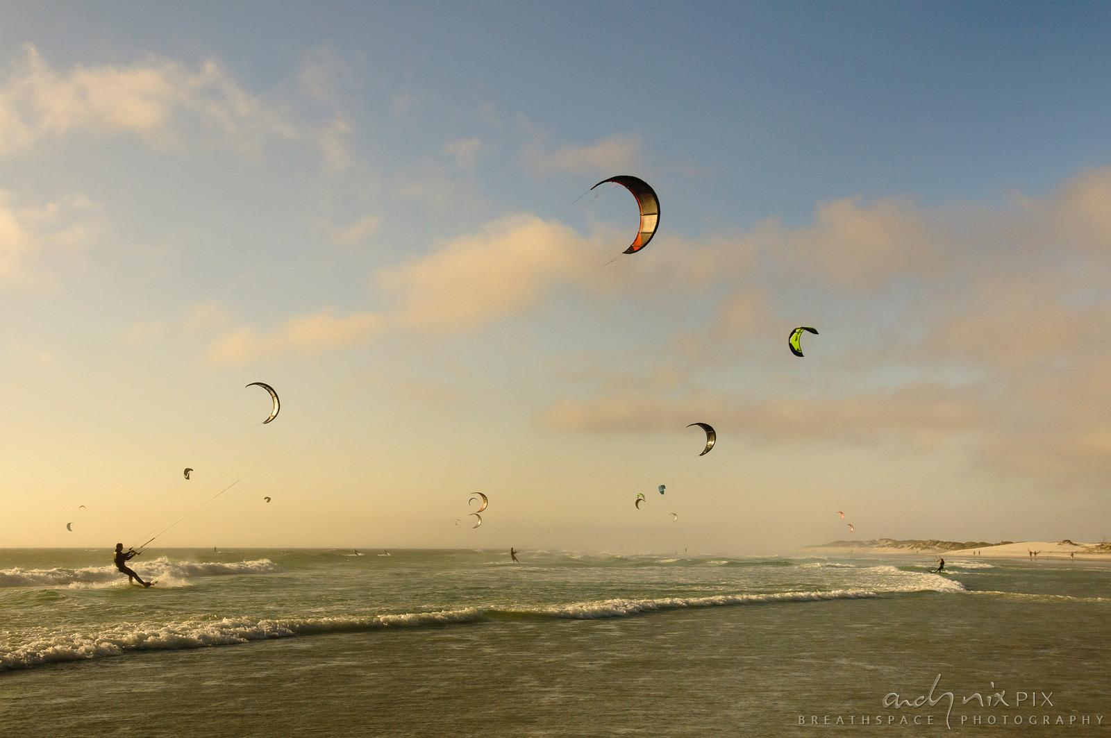 Many kitesurfers on sea at sunset