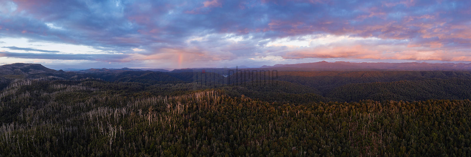 Tarkine Landscape with Meredith Range in the Background at Sunset