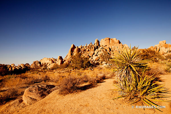 HIDDEN VALLEY JOSHUA TREE NATIONAL PARK CALIFORNIA AMERICAN SOUTHWEST DESERT LANDSCAPE