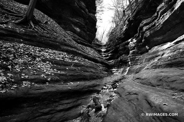 FRENCH CANYON STARVED ROCK STATE PARK ILLINOIS MIDWEST NATURE LANDSCAPE BLACK AND WHITE