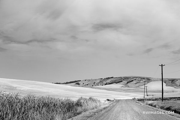 COUNTRY ROAD PALOUSE WASHINGTON BLACK AND WHITE LANDSCAPE