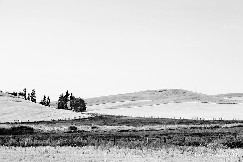 PALOUSE RURAL EASTERN WASHINGTON BLACK AND WHITE LANDSCAPE