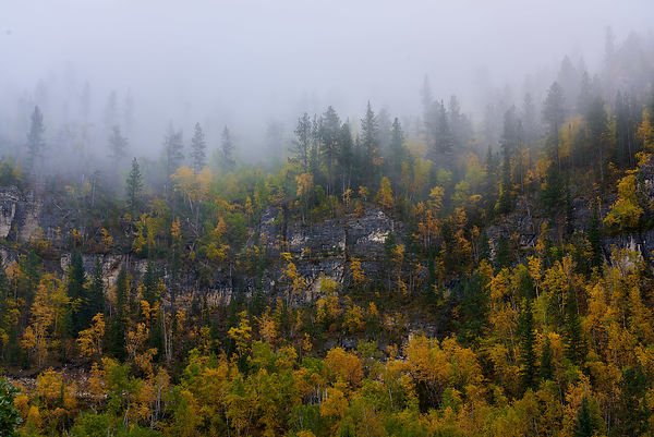 Spearfish_Fall_Fog