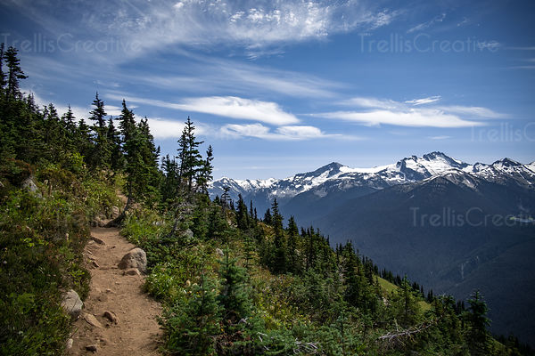 Mountainside hiking trail with a view of the Blackcomb Mountains, Whistler, Canada.