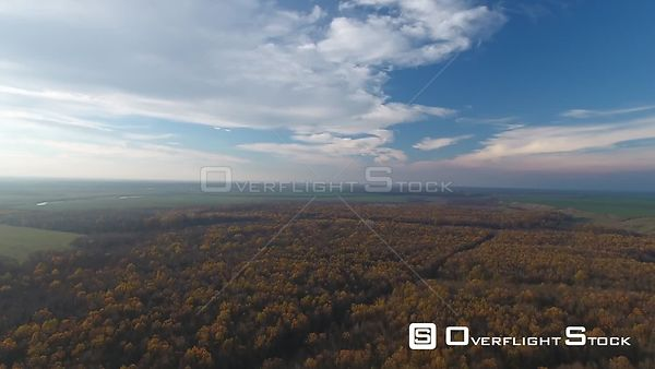 View over a forest during autumn, pan down, in Romania