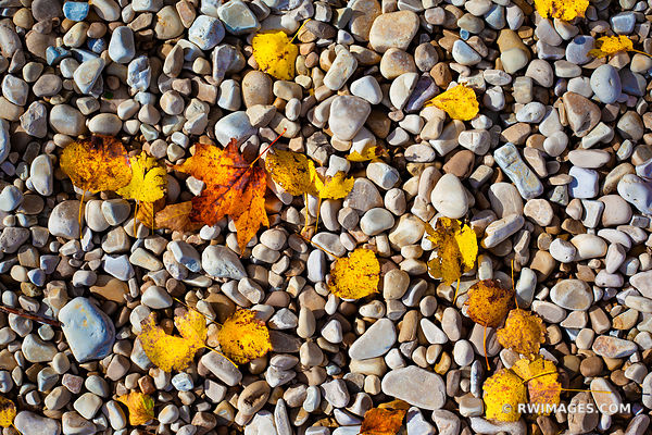 AUTUMN LEAVES BEACH ROCKS ROCK ISLAND STATE PARK WISCONSIN DOOR COUNTY WISCONSIN