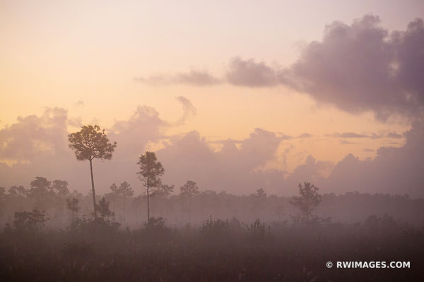 DAWN EVERGLADES NATIONAL PARK FLORIDA