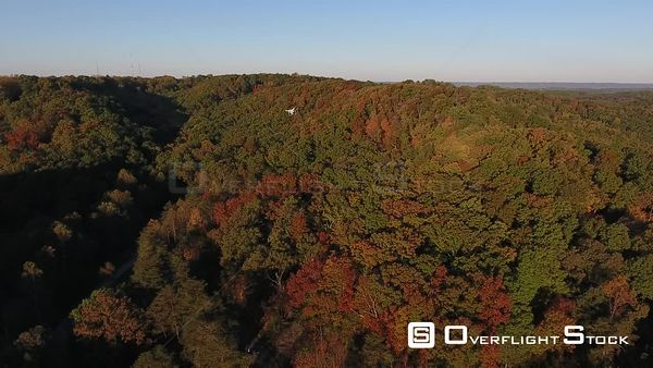 Drone in Flight Over Colourful Autumn Forest
