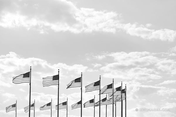AMERICAN FLAGS NATIONAL MALL WASHINGTON DC BLACK AND WHITE