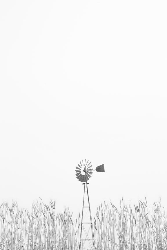 FARM WINDMILL WHEAT FIELD FARM WINDMILL PALOUSE EASTERN WASHINGTON STATE BLACK AND WHITE VERTICAL