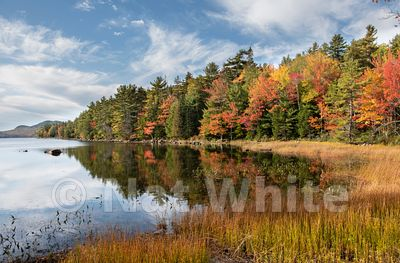 Maine_Coast-_Acadia_NP_2019-Maine_Coast-_Acadia_NP_2019October_09_2019_