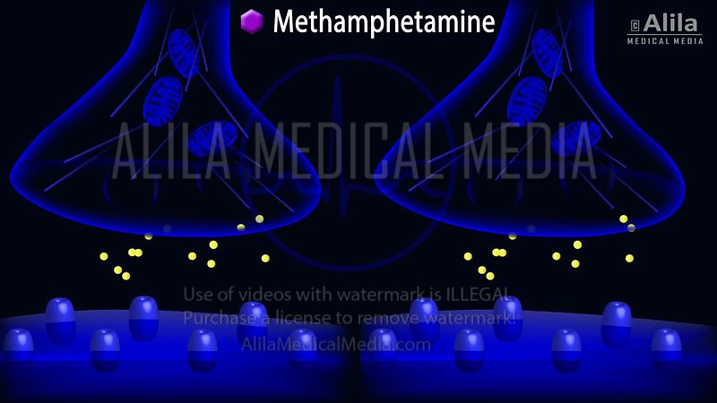 Methamphetamine action on dopamine synapse animation.