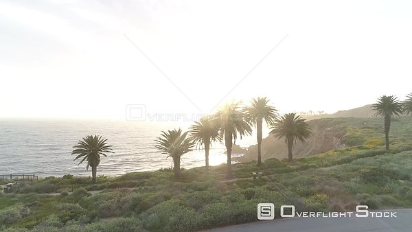 Sunlit Coastal Scene California