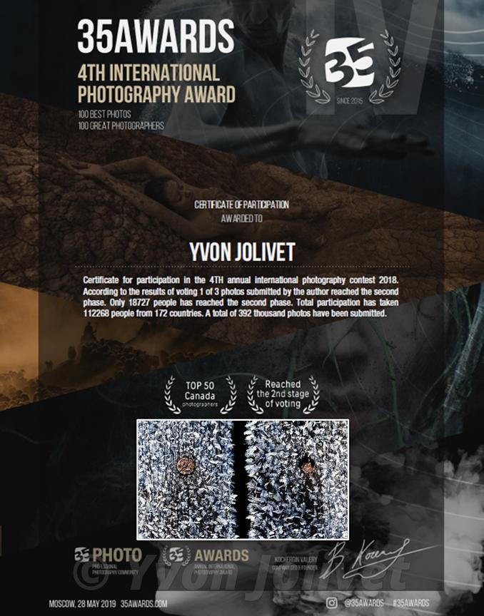 Certificate : 35 Awards; 4Th International photography Awards, moscow mai 2019