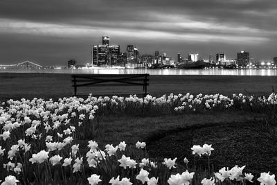 sunset-detroit-skyline-with-tulips-BW-infared_IMG_0979