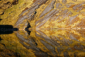 Detail of rocky hillside reflected in Laguna Chillata, Bolivia