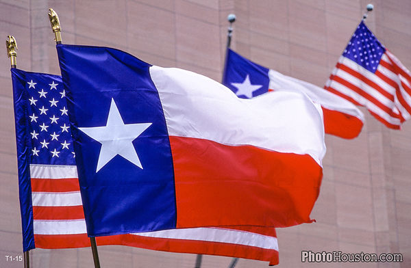 Texas Flags on Parade
