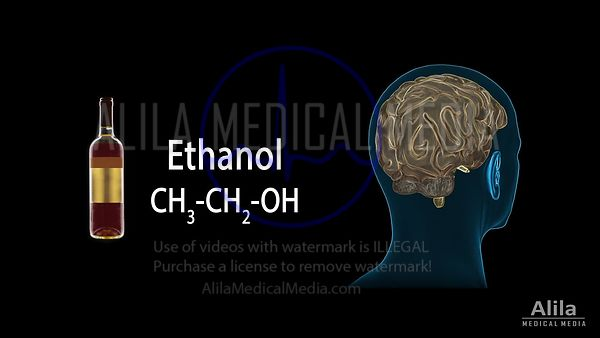 Alcohol's effects on the brain NARRATED animation, PROFESSIONAL version.