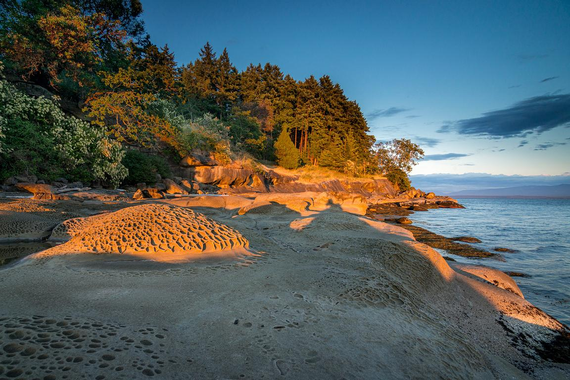 Tafoni sandstone formations on the south side of Hornby Island at sunset.
