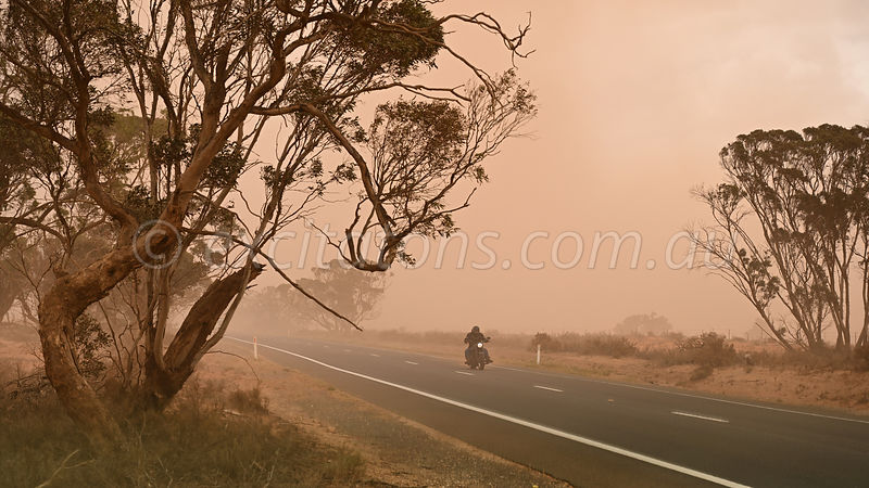 Motor cyclist rides through dust storm