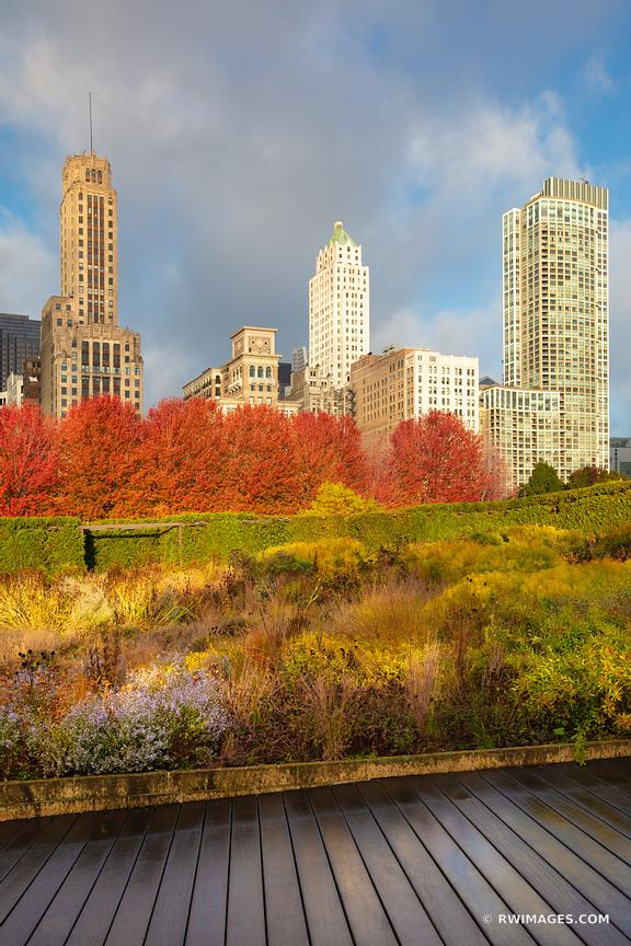 LURIE GARDEN CHICAGO ILLINOIS FALL COLORS VERTICAL