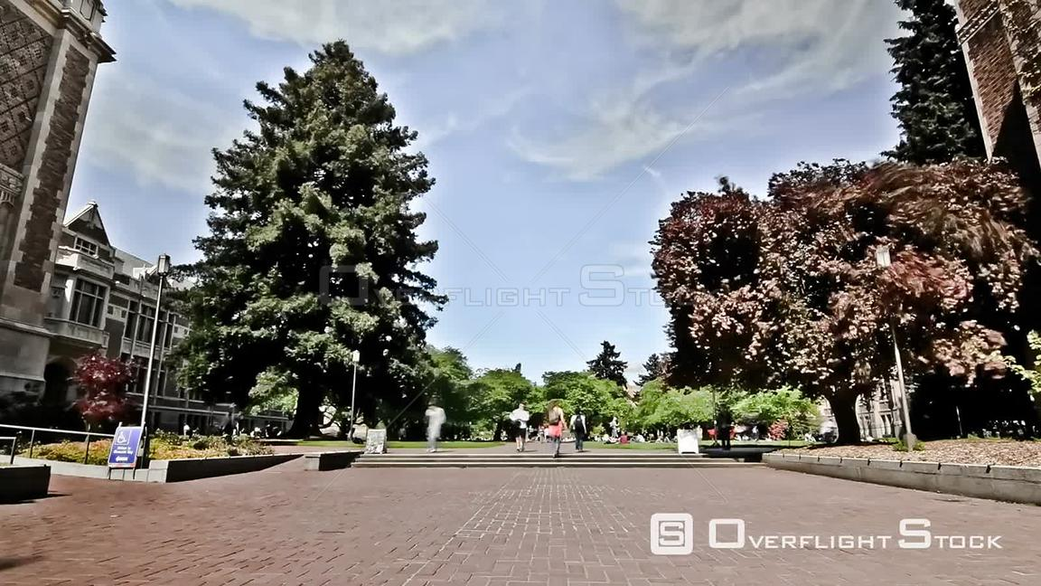Time lapse clip of campus pedestrians Seattle Washington