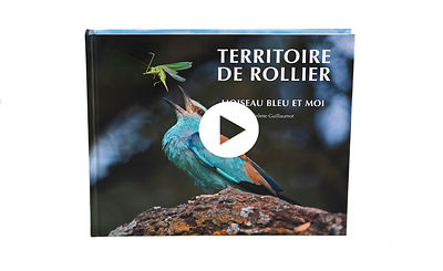 "Video teaser of ""Territoire de Rollier "" - my book about the European Roller"