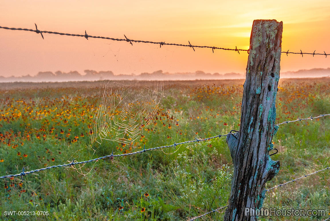 texas-ranch-fence-SWT-005213-0705