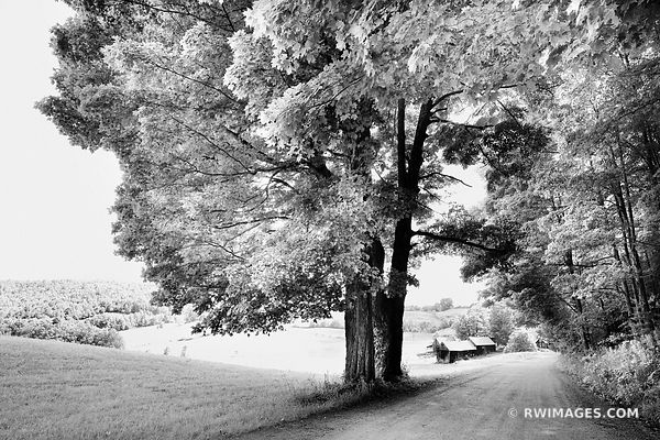 COUNTRY ROAD AND A FARMLAND VERMONT BLACK AND WHITE