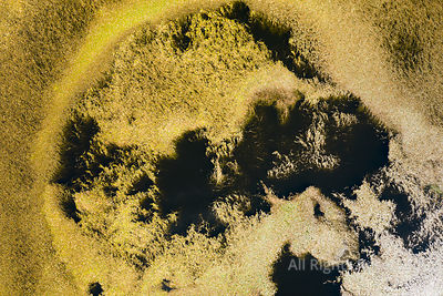 Aerial Top View Looking Into a Volcanic Caldera Crater Lake With an Abstract Pattern of Plants in the Water, at the Planalto ...
