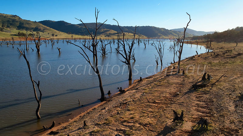 Hume Reservoir, dead trees, low water level.
