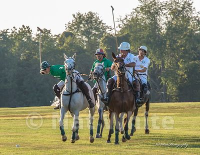 2021_calendar_polo_Date_(September_13_2014Month_DD_YYYY)1_500_sec_at_f_9.0_NAT_WHITE